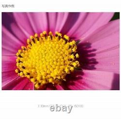 NEW Sony SEL30M35 E-mount 30mm F3.5 Single Focus Macro Lens from JAPAN
