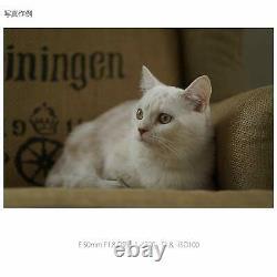 SONY SEL50F18-B single focus lens E 50mm F1.8 OSS APS-C format from JAPAN NEW