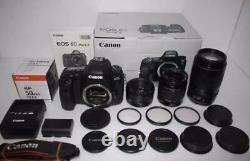 Canon Eos 6d Mark II Standard Telephoto Single Focus Triple Lens Set 508