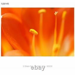 Nouveau Sony Sel30m35 E-mount 30mm F3.5 Lentille Macro Simple Focus Du Japon